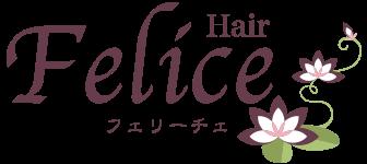 三条市美容室ヘアフェリーチェ ロゴ